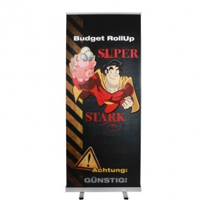 Budget RollUp Display 85/200