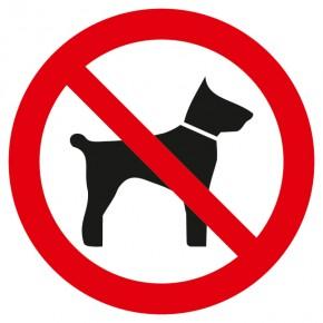 Verbotsschild Mitführen von Tieren verboten