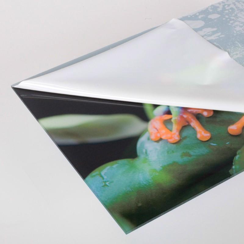 ihr foto auf acrylglas drucken medienkraftwerk. Black Bedroom Furniture Sets. Home Design Ideas